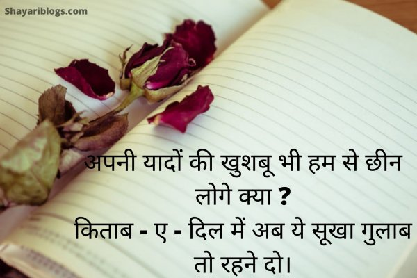 Sad rose day shayari image