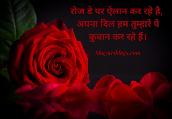 7 feb rose day shayari image