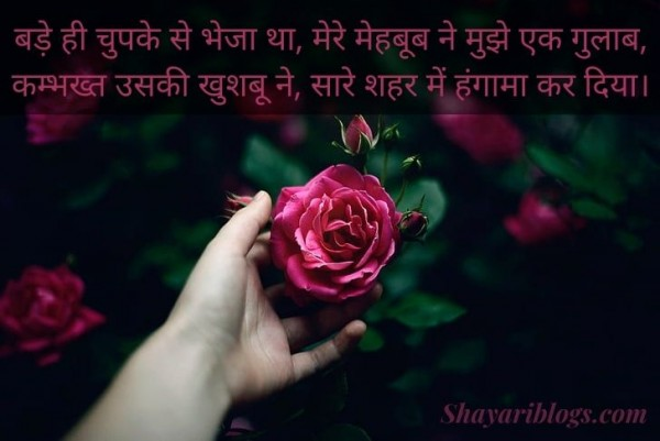 rose day shayari in hindi image