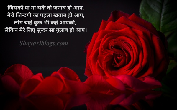 rose day shayari quotes image